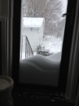 View from the Back Door (N.E. Blizzard 2013)