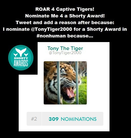 TODAY Is The LAST DAY To VOTE For TONY & Captive TIGERS!