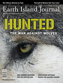 Earth Island Journal Stands Up For Wolves
