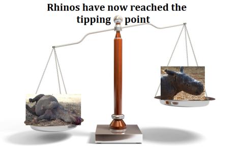 Rhino tipping point